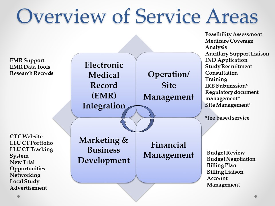 Overview chart of services areas